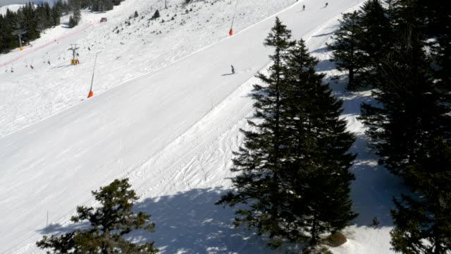 Aerial - Flight past trees at ski resort video