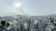 Aerial: Flying Over Snowy Forest Towards The Ocean video