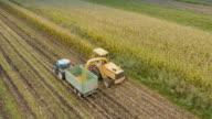 4K Aerial: Harvesting Corn For Silage video