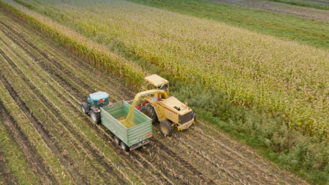 4K Aerial: Harvesting Corn For Silage video