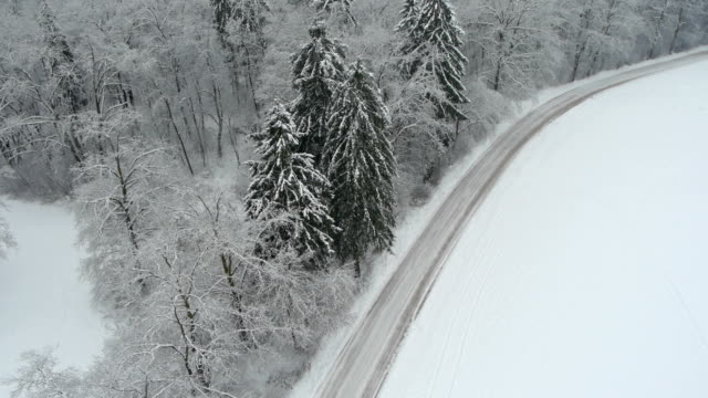 Aerial HD: Winter forest road video