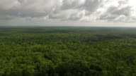 Aerial Mississippi Countryside video