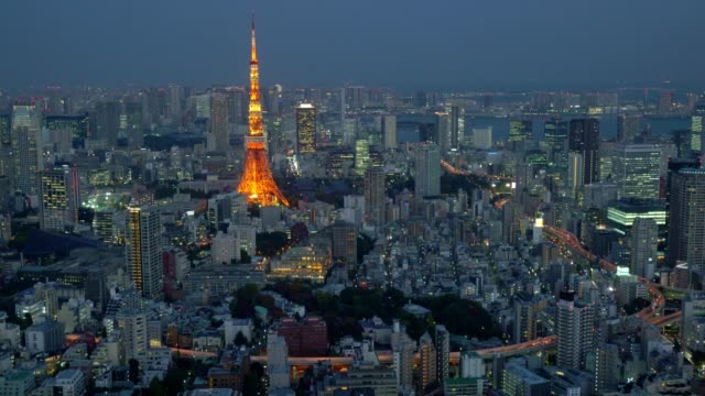Aerial night view of Tokyo cityscape with Tokyo Tower video