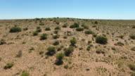 Aerial of Emu in Australian Outback_4K video