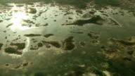 Aerial of swampy archipelago 1 video