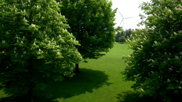 Aerial over trees revealing wind turbine and nuclear power plant video