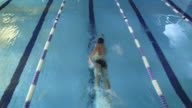 Aerial Overhead Shot of Professional Swimmer Performing Front Crawl during Training in Swimming Pool video