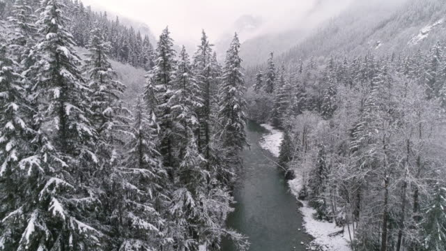 Aerial Pan to Epic Winter Landscape in Snowy Mountain Forest with Flakes Falling on Ice Cold River video