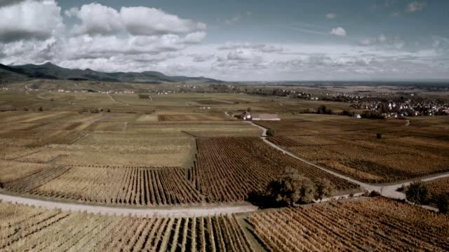 Aerial Riquewihr Village Cityscape Alsace France video