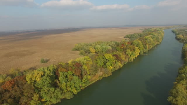 Aerial river view video