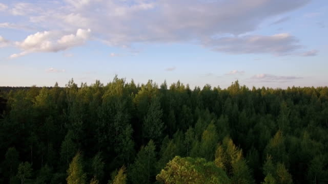 Aerial rural scene at sunset, Russia video