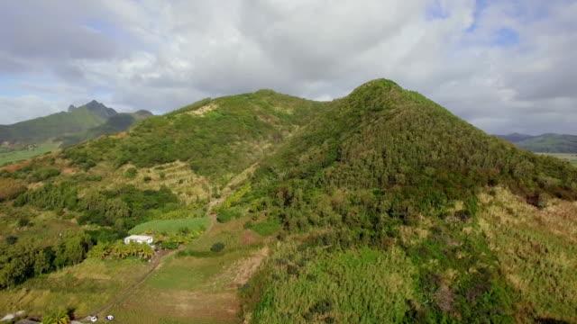 Aerial scene of green Mauritius mainland video
