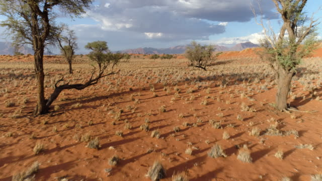 Aerial scenery view of the NamibRand Nature Reserve video