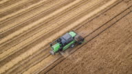 Aerial Shot Of A Combine Cutting Wheat video