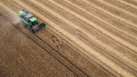 Aerial Shot Of A Combine Harvester Cutting Wheat video