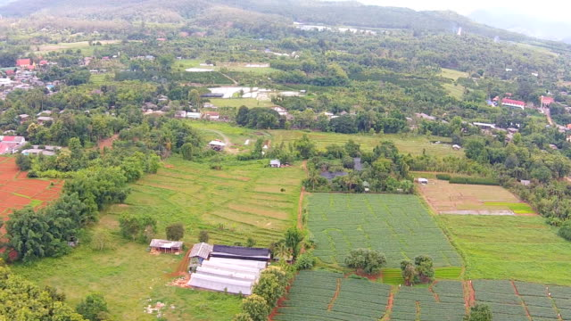 Aerial shot of agriculture and farm land video