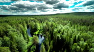 Aerial shot of Boreal Forest with meandering River video