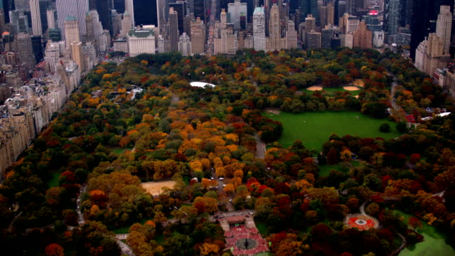 Aerial shot of Central Park in Fall, New York City video