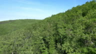 Aerial shot of dense Mediterranean forest video
