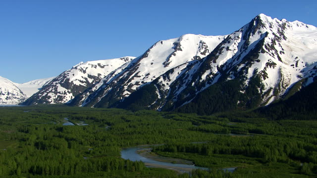 Aerial shot of forest streams and snowy mountains, Alaska video