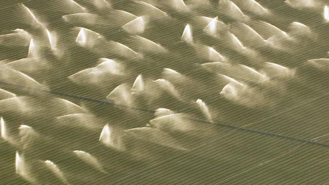 Aerial shot of irrigation sprinklers in field video