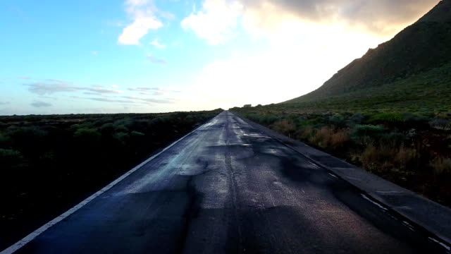 Aerial shot of lonely straight road. Road and beautiful nature video