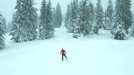 Aerial shot of man cross country skiing in nature video