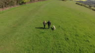 Aerial Shot Of Mature Couple And Dog On Walk In Countryside video