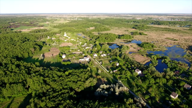 Aerial shot of nice lakes and reedbeds with a lot of cane, and rush in Ukraine video