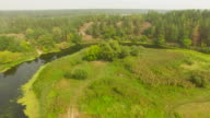 Aerial shot of river in forest landscape during summer video