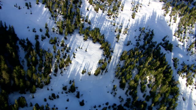 Aerial shot of snow covered forest, Alaskan wilderness video