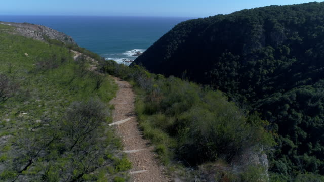 Aerial shot of South African coast video