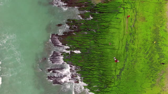 Aerial shot of The green Reef, Taiwan video