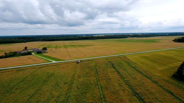 Aerial shot of the wide big agricultural field video