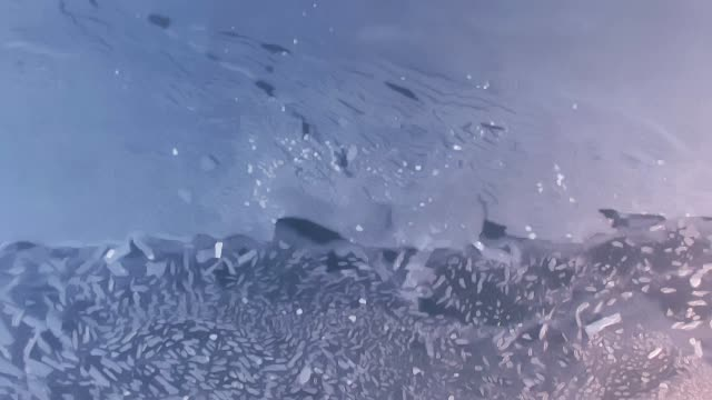 Aerial texture of frozen lake video