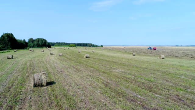 Aerial: The tractor operates in a field with many haystacks collects the hay. video