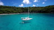 aerial video of honeymoon couple snorkeling in the Caribbean video