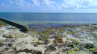 Aerial video of tropical Florida Keys video