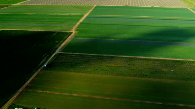Aerial view agricultural farming land Southern Florida video