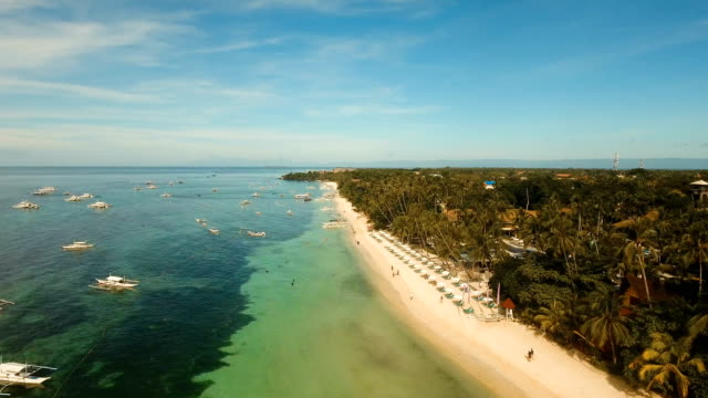 Aerial view beautiful Alona beach on a tropical island Bohol. Philippines video