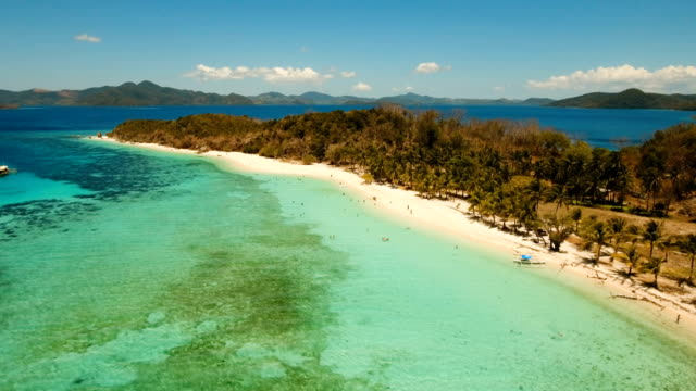 Aerial view beautiful beach on a tropical island Malcapuya. Philippines video