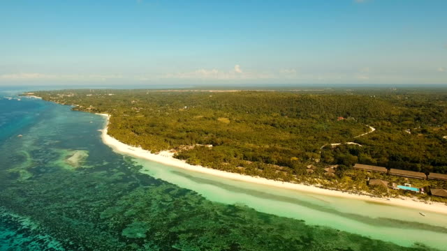 Aerial view beautiful beach on a tropical island. Philippines,Bohol video