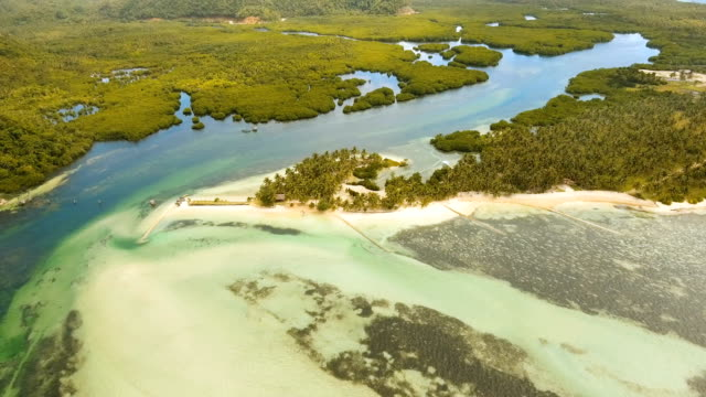 Aerial view beautiful beach on a tropical island. Philippines,Siargao video