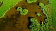 Aerial view coastal Island Wetlands Southern Florida video