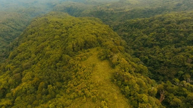 Aerial view evening rainforest. Camiguin island Philippines video