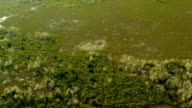 Aerial view Everglades  largest Sub tropical region in USA video