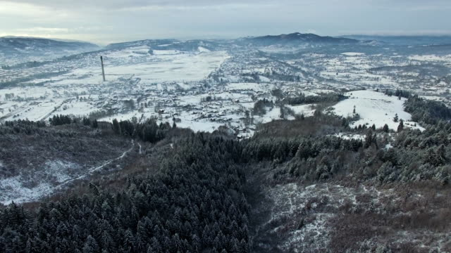 Aerial view, flight over hills and forest video