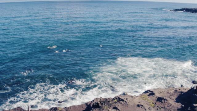 4K Aerial View Flying Over Green Grass Sea Cliffs Revealing Ocean video