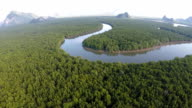 Aerial View: Mangrove forest in Pangnga province video