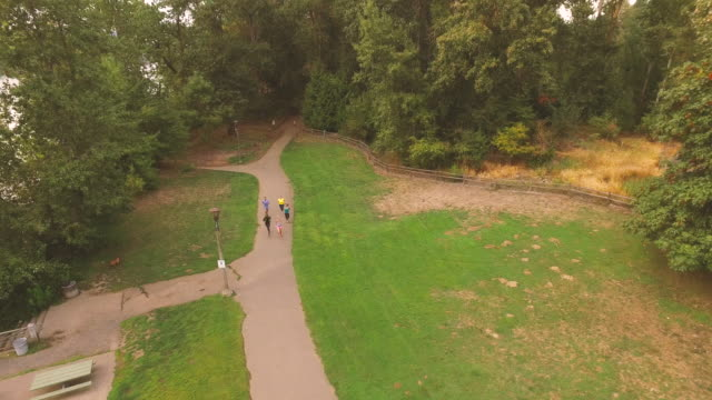 Aerial view of a group of runners running in the park video